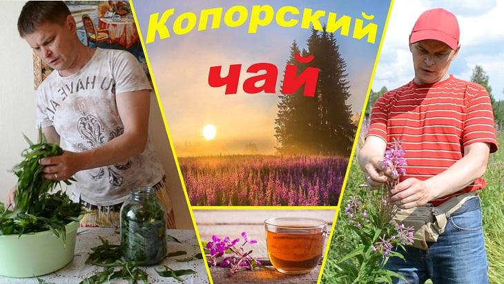 Чай из кипрея приготовление